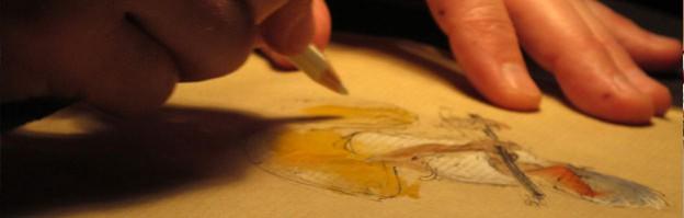 dessins-thumb