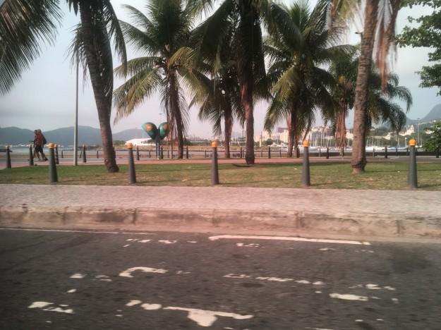 Rio fin